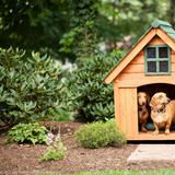 Homeowner Jennifer Mooney's dachshunds, Henry and Kiki, even have their very own retreat in her garden.   HGTV FrontDoor