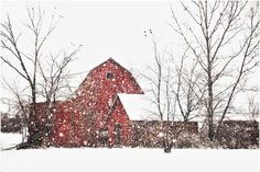 farm, favorit place, winter, new england, snow, erica peerenboom, barnsabandon build, red barns, countri