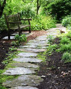 woodland-decor-bunny-print-natural-emerald-green-photograph-saint-louis-botanical-art-english-garden-photography-stone-bench_1.jpg (1024×128...