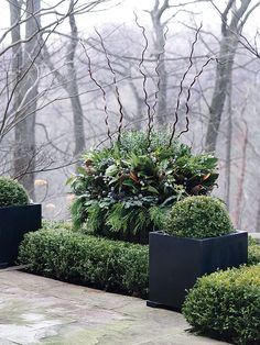 Winter urns.