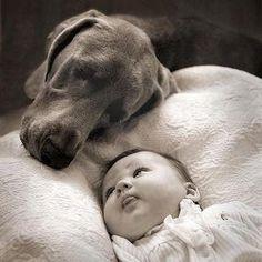 Protective!