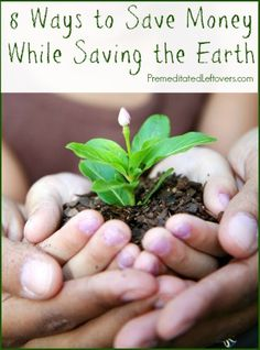 8 Eco-Friendly Tips That Will Save You Money