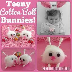 Teeny Cotton Ball Bunnies!