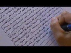 400 word essay topics