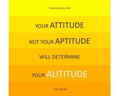 Zig - attitude