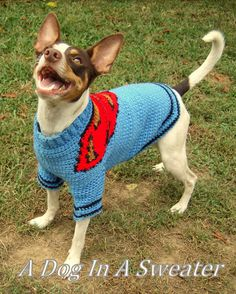 Superdog! from A Dog In A Sweater.   Exclusive custom-fit, formula-based crochet pattern for your dog, the hero!