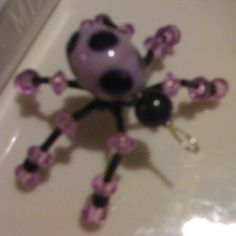 Bead bug insect