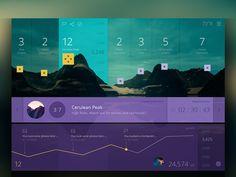 analyt, app, dashboard ui, graphic design hiking, hike race, cosmin capitanu, interface design, dashboard design, web