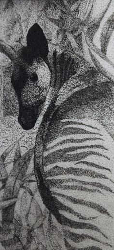 Okapi. Pointillism. Ink   February 2008 wildlif art, februari 2008, okapi art, mammalrt style, ink februari