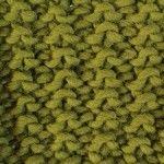 Knitting Kits Aprende a tejer el punto arena / Blog   WE ARE KNITTERS (España, UE, 2013)