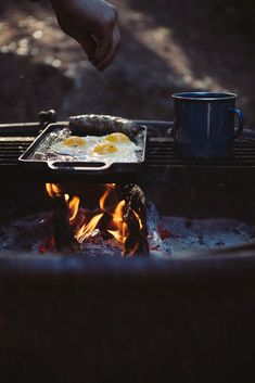Cooking eggs on the campfire