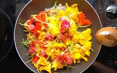 Edible Flowers – Spice up your Summer Cooking - Greener Ideal