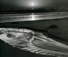 Birds on a Beach by Ansel Adams