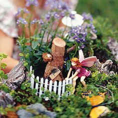 Create a mini garden in a tree stump! See this project and more miniature garden ideas: http://www.midwestliving.com/garden/container/miniature-garden/