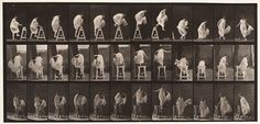 Eadweard Muybridge, Woman jumping over barrier, 1887; collotype, 7 3/8 in. x 15 13/16 in. (18.73 cm x 40.16 cm); Collection SFMOMA, Gift of Frederick P. Currier and Amy McCombs