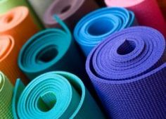 fit, reduce stress, animal shelters, weight loss, colors