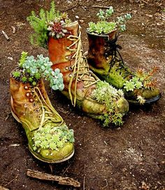 Succulents in boot planters. Use my dad's old work boots