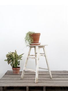 This perfectly weathered step ladder could do double duty as a plant stand when not in use. #LocalMilk