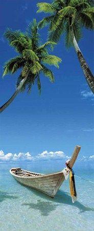 Somewhere New - Tropical Beach