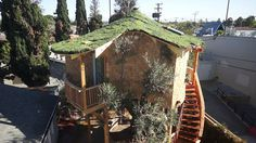 A fantastic tree house with a garden, window boxes and a live planted roof!