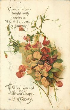 Sweet peas ~ in pink, white, and purples.  Happy birthday postcard, 1921.