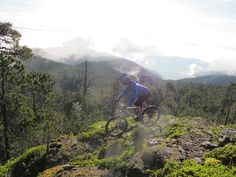 Mountain biking at dawn, watching the sun rise over the Oaxacan cloud forest in southern Mexico. Worth getting up at 5am!  #mountainbiking #mexico #adventure