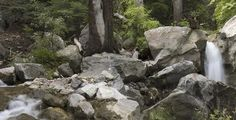 Ramsey Canyon Nature Preserve, Arizona. A beautiful hike and so many hummingbirds!