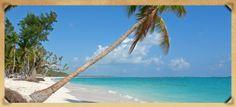 Hard Rock Casino - Punta Cana