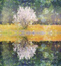 Pastel Memories - Tara Turner