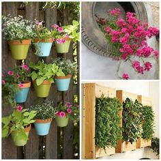 Jardines urbanos on pinterest vertical gardens old pallets and vertical vegetable gardens for Jardines chicos decoracion