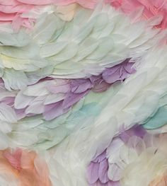 pastel feathers.