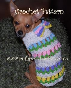 Tulips in a Row Dog  Sweater Spring