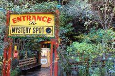Mystery Spot - Santa Cruz, CA