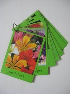 Use a seed magazine to make a flower flip book.