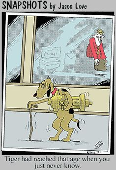 Bathroom humor for dog and old men.