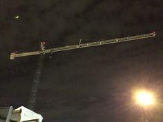 Sleeping Boston crane.