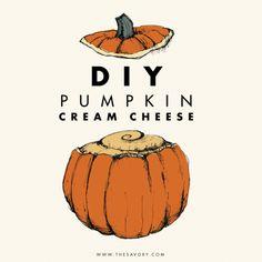 food, pumpkin cream, fall, pumpkins, spice cream