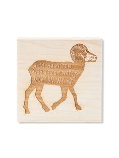 Big Horn Sheep Custo