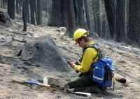 California's Rim Fire has left a contiguous barren moonscape in the Sierra Nevada mountains that experts say is larger than any burned in centuries. (via @The Associated Press; photo via US Forest Service)