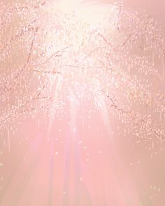 Light Through Trees - Art Print - 8 x 10- Open Edition - trees, foliage, sunlight, pink. $22.00, via Etsy.