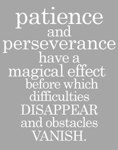 PATIENCE and PERSEVERANCE . . . John Adams Quote