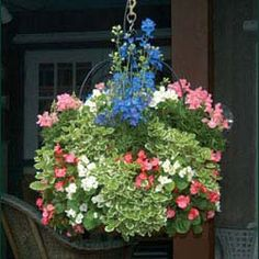 kinsman garden hanging planter  - love it