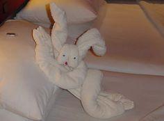 Towel Animals & Towel Origami