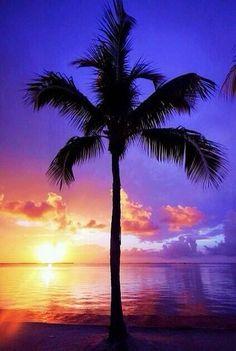 Twitter / Earth_Pics: Chasing the sun ~ Hawaii ...