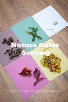 Nature Color Sorting