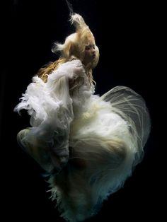Flow plant, graphic design, alexander mcqueen, dress, underwater photography, fashion photography, angels, jellyfish, editorial fashion