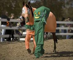 26 Creatively Costumed Horses Who Are Masters Of Disguise