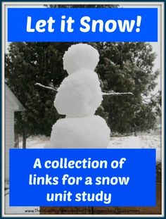 Let It Snow: A Snow Unit Study