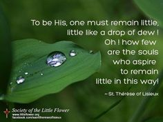 """...little like a drop of dew!""  St.. Therese of Lisieux"