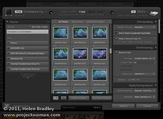 5 Things to know about the Lightroom Import dialog